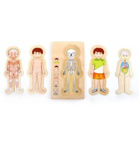 Apprendre corps humain Puzzle - Jouet Montessori